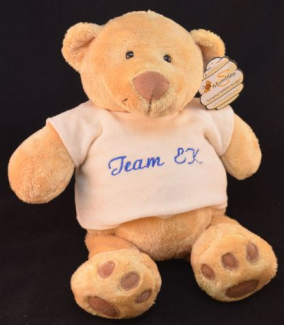 TEAM EK TEDDY